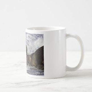 I need coffee mug.