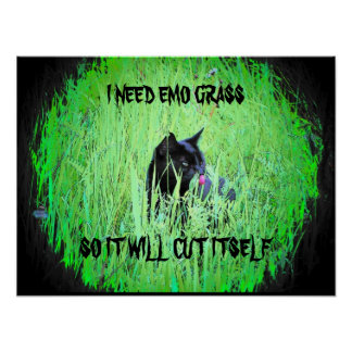 I need emo grass poster