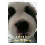 I Nose it's Your Birthday Card