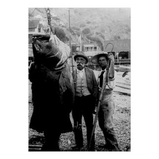 I once caught a fish this big Poster