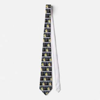 I own this jeep tie