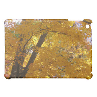 I Pad case Autumn Tree Cover For The iPad Mini