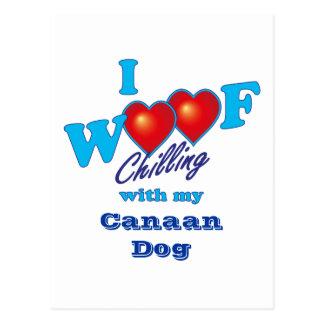 I perro de Canaan del tejido Tarjeta Postal