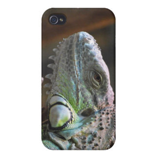 I Phone 4 Speck Case with head of Iguana lizard iPhone 4/4S Covers