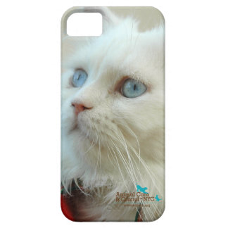 "I-phone 5 case ""Walter the cat"""
