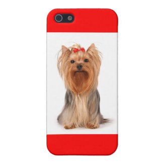 i Phone 5 Love Yorkshire Terrier Puppy Dog Case Cover For iPhone 5