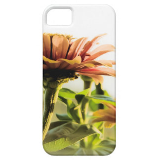 I-phone Grundge Golden Flower Nature Beauty iPhone 5 Cover