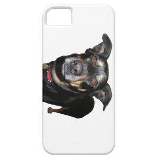 I phone I pad case