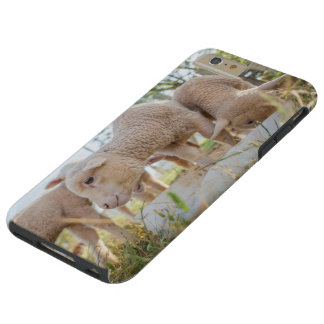 I phone S6 Protective Case with Little Lambs