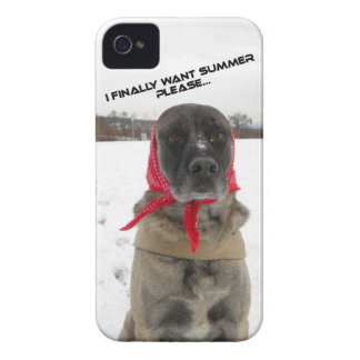 i phone wraps with kangal in the snow iPhone 4 cover