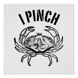 I Pinch Poster