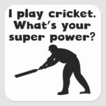 I Play Cricket Super Power Square Stickers