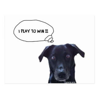 I Play to Win !! Postcard