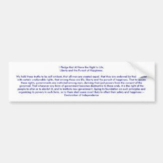 I Pledge Declaration of Independence jGibney Bumper Sticker