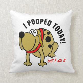 I Pooped hoy Cojín Decorativo