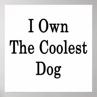 I poseer el perro más fresco poster