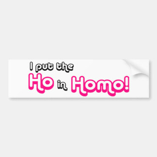 I Put The Ho in Homo Car Bumper Sticker