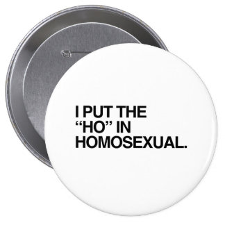 I PUT THE HO IN HOMOSEXUAL --.png Pin