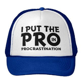 I Put the Pro in Procrastination Funny Hat