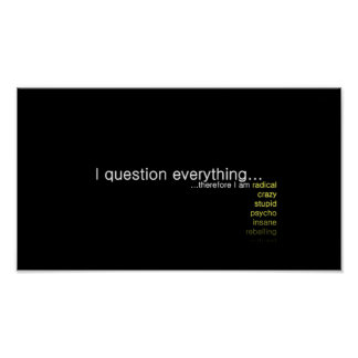 I Question Everything, Therefore I Am... Poster