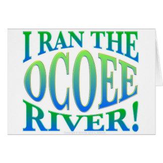 I Ran the Ocoee River Greeting Cards