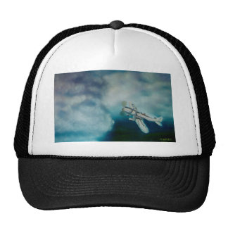 I reached up trucker hat