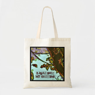I read past my bedtime budget tote bag