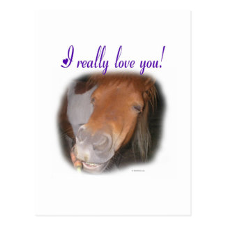 I really love you! postcard