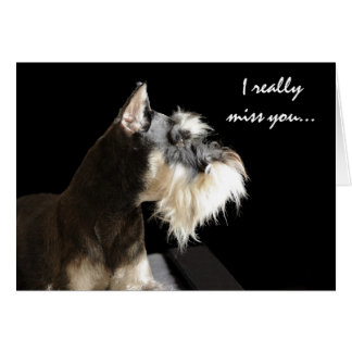 I really miss you... greeting cards