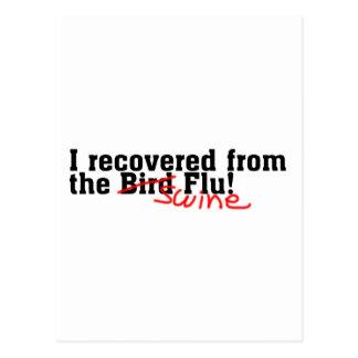 I Recovered from the Bird no Swine Flu Postcard