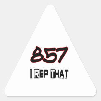I Rep That 857 Area Code Triangle Sticker