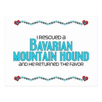 I Rescued a Bavarian Mountain Hound (Male Dog) Postcard