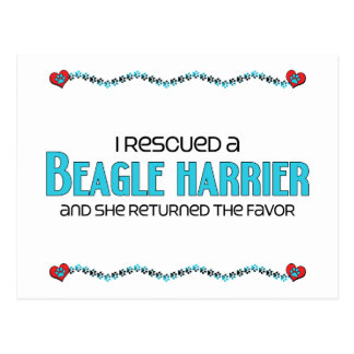 I Rescued a Beagle Harrier (Female Dog) Postcard