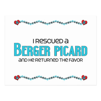 I Rescued a Berger Picard (Male Dog) Postcard