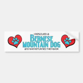 I Rescued a Bernese Mountain Dog (Female Dog) Car Bumper Sticker