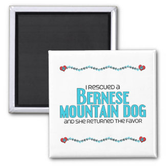I Rescued a Bernese Mountain Dog (Female Dog) 2 Inch Square Magnet