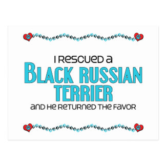 I Rescued a Black Russian Terrier (Male Dog) Postcard