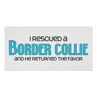 I Rescued a Border Collie Male Dog Print