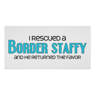 I Rescued a Border Staffy Male Dog Adoption Poster