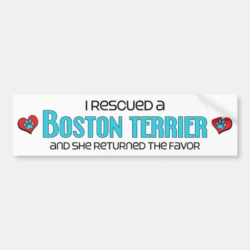 I Rescued a Boston Terrier (Female Dog) Bumper Stickers