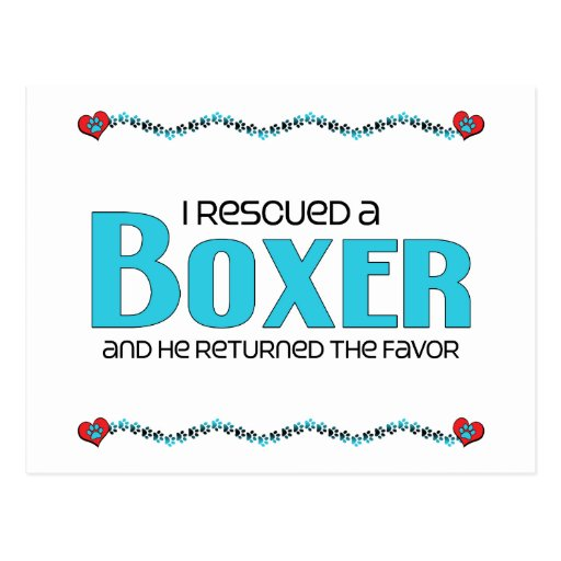 I Rescued a Boxer (Male Dog) Post Card