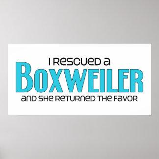 I Rescued a Boxweiler (Female) Dog Adoption Design Poster