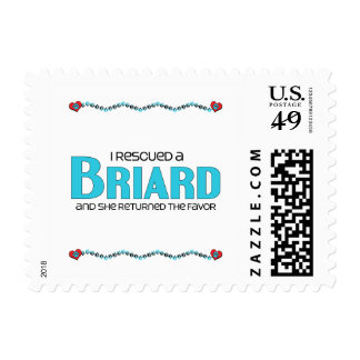 I Rescued a Briard (Female Dog) Postage Stamp