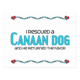 I Rescued a Canaan Dog (Male Dog) Post Cards