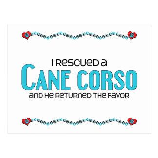 I Rescued a Cane Corso (Male Dog) Postcard