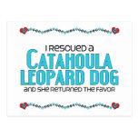 I Rescued a Catahoula Leopard Dog (Female Dog) Post Cards