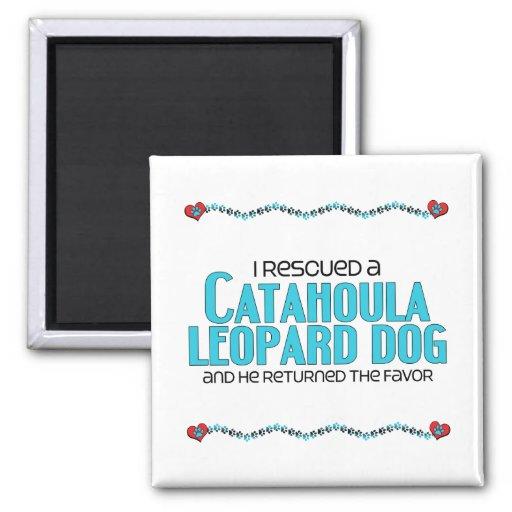I Rescued a Catahoula Leopard Dog (Male Dog) Magnet