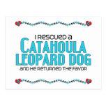 I Rescued a Catahoula Leopard Dog (Male Dog) Postcard