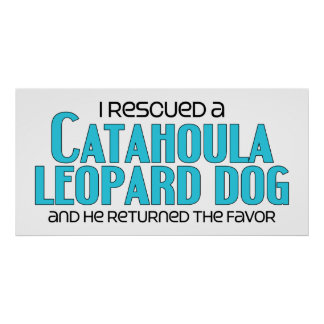 I Rescued a Catahoula Leopard Dog (Male Dog) Poster