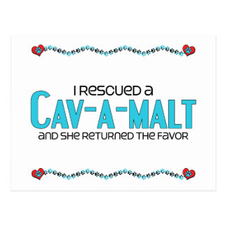 I Rescued a Cav-A-Malt Female Dog Adoption Postcard